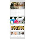 Шаблон сайта организация свадеб